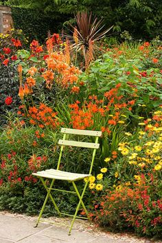Metal chair by hot coloured border with Crocosmia, Canna, Dahlia and Kniphofia at Wollerton Old Hall, Shropshire
