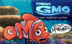 Expose GMO dangers!