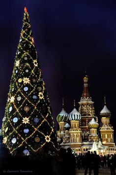 Christmas Tree on the Red Square Moscow. against the background of cathedral of Basil Blessed. night shot..................d