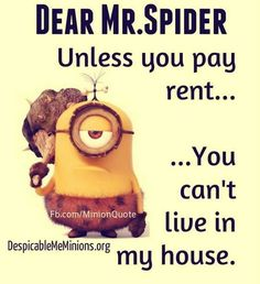 "That's why I have a man come and ""evict"" you every 3 or 4 months!!!"