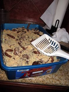 kitty litter cake...fear factor treat