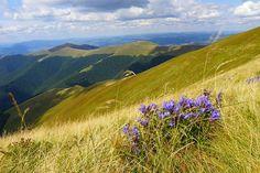 Slovakia, National Park Poloniny National Parks, Mountains, World, Nature, Travel, Naturaleza, Viajes, Destinations, The World