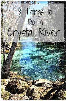Crystal River is a quiet, yet adventurous town off Florida's Gulf of Mexico coast. I love the area so much that I went back again this year to check off some of the things I didn't do last year! Here are some of my recommendations!