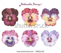 Image result for watercolor pansies