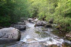 Ríos de la vertiente cantábrica. Río Besaya.