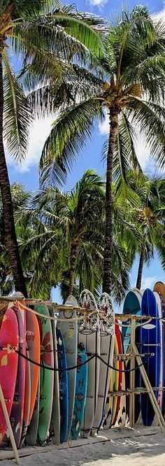 Surfin' Waikiki - surfboards ready for action at Waikiki Beach, Honolulu, Hawaii.