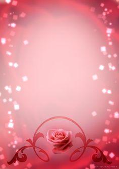 Sparkling Pink Rose Wallpaper.