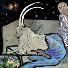 Capricorno. Con questa illustrazione  che è quella del mio segno zodiacale, comincio la serie zodiaco...quindi la prossima sarà l'acquario :-)