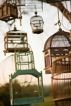 I think old bird cages are lovely