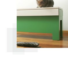 Google Image Result for http://kattbank.com/images/index02.jpg    If I felt like spending a few grand on a kitty litter/bench. Pretty cool anyway.