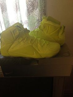 Nike Zoom LeBron XII 12 EXT Size 11.5 DS