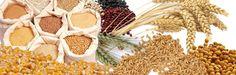 Happy new me: Afinal porque é que os cereais integrais são melho...