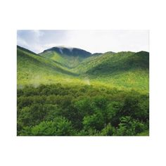 Decorate your walls with Smoky Mountains canvas prints from Zazzle! Choose from thousands of great wrapped canvas to beautify your home or office. Vacation Pictures, Great Smoky Mountains, Beautiful Moments, Custom Posters, Wall Decals, Country Roads, In This Moment, Canvas Prints, Fine Art