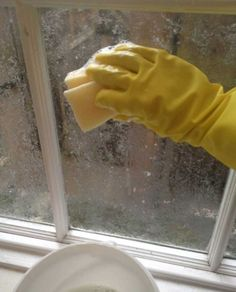 22 Home Hacks Thatll Make Renters Say Why Didnt I Know About This Sooner? 2019 The post 22 Home Hacks Thatll Make Renters Say Why Didnt I Know About This Sooner? 2019 appeared first on Lace Diy. Window Screens, Window Coverings, Diy Lace Privacy Window, Kitchen Window Treatments, Rental Decorating, Tips & Tricks, Corn Starch, Home Hacks, Brushes
