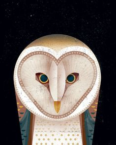 I love this owl illustration by Dieter Braun.