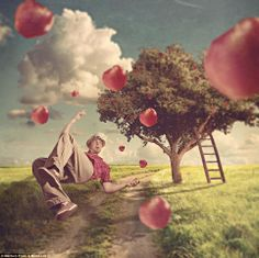 Photo Manipulation par Shawn Van Daele : Entre Reve et Realite - MaxiTendance Creative Photography, Art Photography, Alfred Hitchcock The Birds, Of Mice And Men, Photo Manipulation, Images, Knowledge, Mindfulness, Van