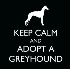 Keep Calm and Adopt a Greyhound Decal. beautifullyurban, Etsy.  £2.50.  Proceeds are split 50/50 with the Retired Greyhound Trust & Portsmouth Retired Greyhounds.