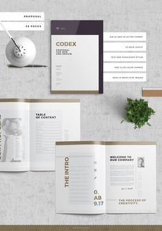 Codex Startup Pitch Proposal Pack on Behance