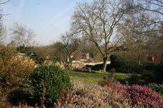Le jardin, un matin d'avril 2013