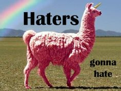 Haters gonna hate. Behold the Llamacorn!