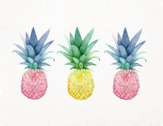Pineapple Trio Archival Pineapple Print 8x10 5x7 9x12 by LunaReef