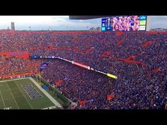 """Florida honored Gainesville native Tom Petty with a collective rendition of """"I won't back down"""" before the fourth quarter Saturday at The Swamp. Gainesville Florida, Florida Gators, Tom Petty Youtube, Teary Eyes, Fight Song, University Of Florida, Music Tv, Football Fans"""