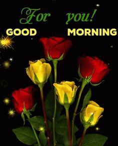 """Képtalálat a következőre: """"good morning flowers gif"""" Good Morning For Him, Good Morning Picture, Good Morning Messages, Morning Pictures, Good Morning Images, Morning Quotes, Good Day Gif, Beautiful Gif, Beautiful Roses"""
