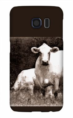 BackwaterStills.com - Snap Case Mockup - Where to buy iPhone snap case - Curious Cow