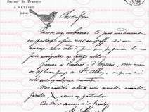 Paris Letter Brief  Bügelbild A4 Nostalgie Shabby