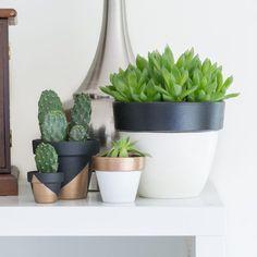 Simple DIY Ways To Customize Terracotta Pots