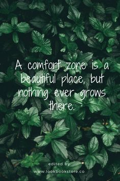 Inspirational Quotes // A comfort zone is a beautiful place, but nothing ever grows there.
