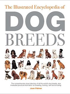 All Breeds Of Dogs, Best Dog Breeds, Used Books, Big Dogs, Book Lists, Habitats, Childhood Memories, Fur Babies, Terrier