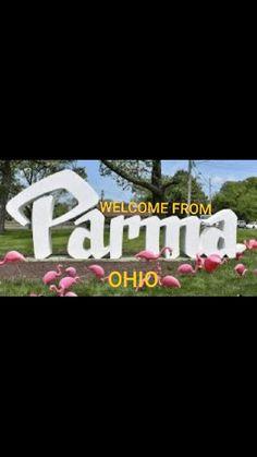 Parma, Adidas Logo, Ohio, Logos, Columbus Ohio, Logo
