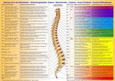 http://www.dorn-therapie-methode.de/images/Dorn%20Wirbel%20Organ%20Verbindungstabelle.jpg
