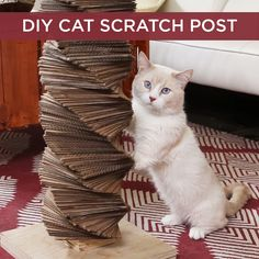 Make Fluffy's day with this DIY cat scratch post!