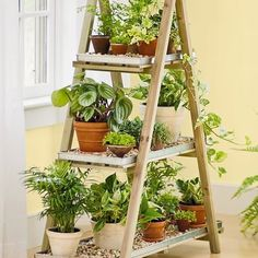A-Frame Plant Stand: