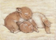 """Rabbits ACEO Print- Cinnamon Buns  2.5 x 3.5 """"  5.00  by SavageArtworks on Etsy"""