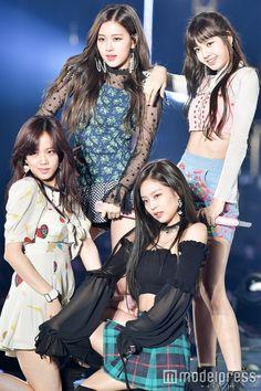 Your source of news on YG's biggest girl group, BLACKPINK! Kpop Girl Groups, Korean Girl Groups, Kpop Girls, Divas, Blackpink Lisa, Kim Jennie, Black Pink Lalisa Manoban, K Pop, Mode Kpop