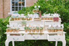 Succulants  as favors and place cards for a recent summer wedding. Thank you, Sassafrass Rentals! Alex and Liz Wedding Photo By Rebecca Arthurs Photography