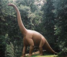 » Dinosaurier, Giganten aus dem Erdmittelalter. Die Dinosaurier lebten im Mesozoikum, in dem die Erde sich deutlich von unserem heutigen Lebensraum unterschied. Es entstand eine phantastische Welt  http://www.pressenet.info/pr-2012/wissen/dinosaurier-eins.html  #wissen