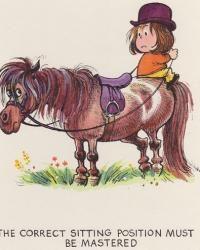 Pony-3.jpg