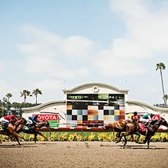 Del Mar Racetrack. Go for the races, stay for the concerts.