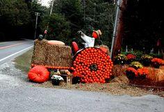 Wonderful Fall display in Cashiers, North Carolina