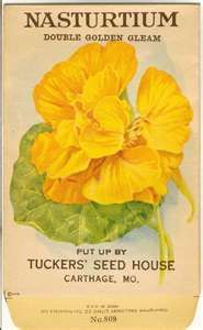 Vintage Flower Seed Packet Tuckers Seed House Lithograph NASTURTIUM ...www.etsy.com