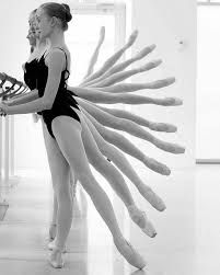 Image result for barre class