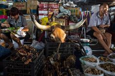 <b>National Geographic News: <i>China's Expanding Middle Class Fuels Poaching, Decadence in Myanmar</i></b><br>Vendors hawk animal wares, including a bull's head for decoration, in a market stall in Mong La. In this shop and others, customers can buy porcupine quills, tiger claws and penises, horns from deer and mountain goats, and other items from wild and often endangered species for use in traditional Chinese medicine.
