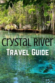 5 Things to Do in Crystal River, Florida- I have personally been here, it's beautiful!
