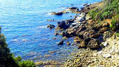 Lo Stellino cove along the Costa degli Etruschi in Maremma. A secret beach with a stunning seascape surrounded by wild garlic and Mediterranean macchia