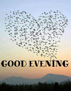 Morning Greetings Quotes, Morning Messages, Good Afternoon, Good Morning Good Night, Good Evening Greetings, Evening Pictures, Evening Quotes, Good Night Blessings, Weekday Quotes