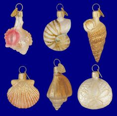"""Mini Seashell Ornaments, 6 pc Set, 2"""" - 2 1/2"""", Merck Family's Old World Christmas 14016. See links to our ocean & Old World Christmas Ornaments collections."""